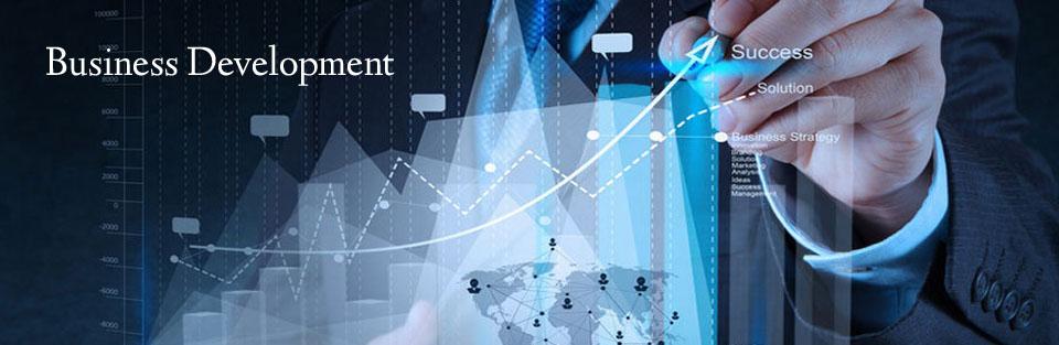 Business Development1